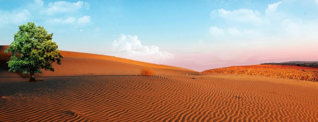 40 dias en el desierto